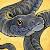 Banarok Lionrage