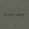 Invisio Grey