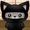 ninjacat007