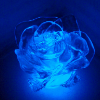Ice_Rose
