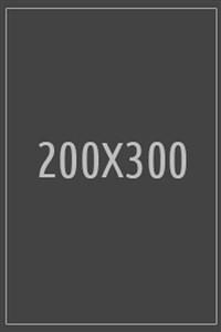 200X300