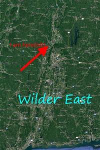 Wilder East (cancelled)