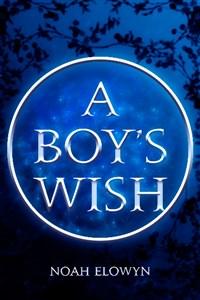 A Boy's Wish
