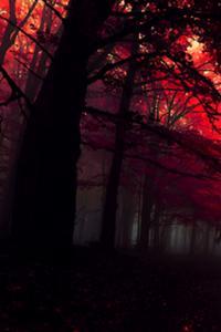 Apocalyptic Survival- How to survive the Apocalypse -