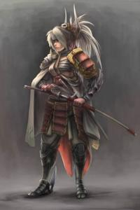 Way of a samurai ( book 1) vengeance