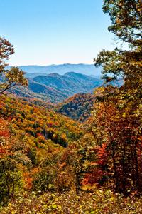 Dwarves of Appalachia