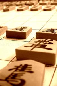 The Shogi game