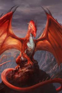 Me? Dragon