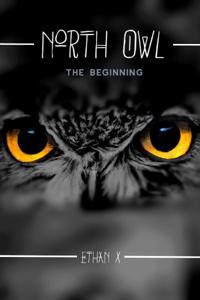 North Owl: Beginning