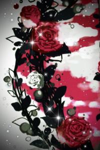 The Sephelyr Rose